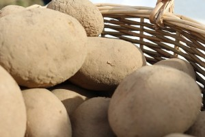 potatoes-738970_640